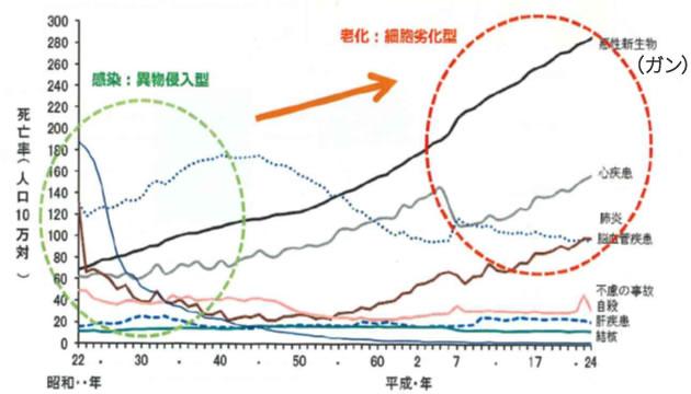 主要死因別にみた死亡率の推移_jp