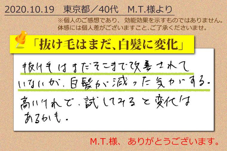 美ルート 口コミ 201019